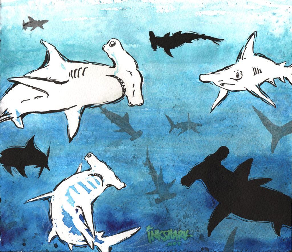 Feminist Sharks