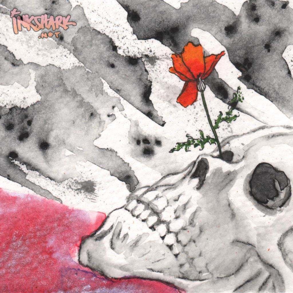 Skull Study - Poppy
